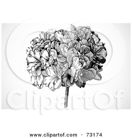 Royalty-Free (RF) Clipart Illustration of a Black And White Head Of Flowers Over Gray Shading by BestVector