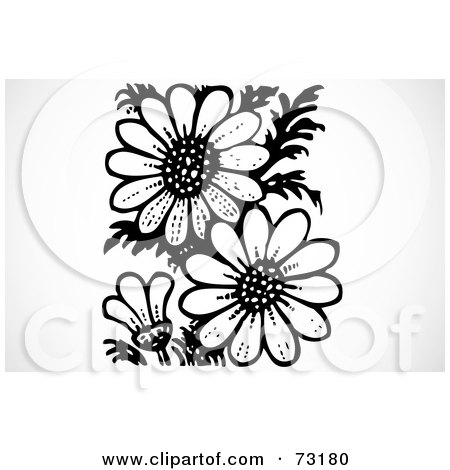 royalty-free (rf) clipart illustration of a black and white daisy