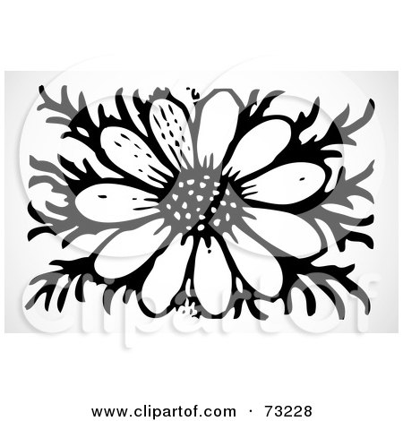 Royalty-Free (RF) Clipart Illustration of a Fully Bloomed Black And White Daisy Flower by BestVector