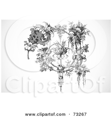 Royalty-Free (RF) Clipart Illustration of a Black And White Vintage Spiraling Elegant Floral Branch by BestVector