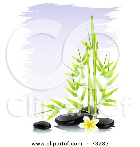 Royalty-Free (RF) Clipart Illustration of Green Bamboo With Black Spa Stones And A Frangipani Flower Over Purple Brush Strokes by Oligo