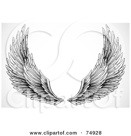 Royalty-Free (RF) Clipart Illustration of a Pair Of Black And White Feathery Open Wings by BestVector