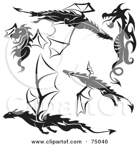 white dragon tattoo. White Dragon Tattoo Design