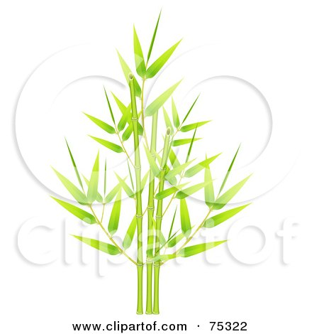 Royalty-Free (RF) Clipart Illustration of a Green Bamboo Cluster Of Fresh New Leaves And Stalks by Oligo