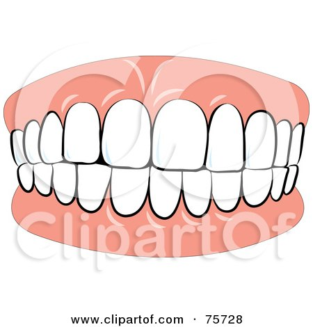 Royalty-Free (RF) Clipart Illustration of Denture Teeth Biting Down by Lal Perera