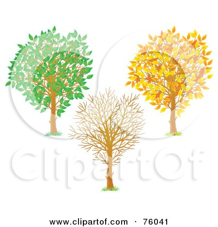 Royalty-Free (RF) Clipart Illustration of a Digital Collage Of A Young Tree Shown In Autumn, Winter And Summer by Alex Bannykh
