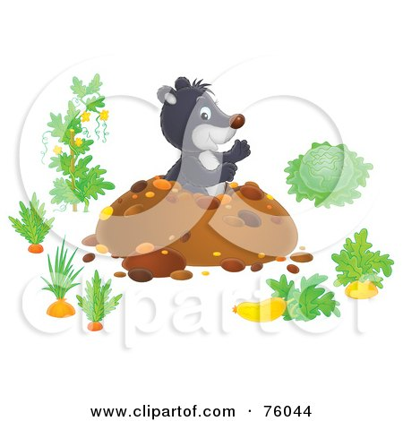 Royalty-Free (RF) Clipart Illustration of a Cute Gray Gopher Popping Out From His Den In A Vegetable Garden by Alex Bannykh