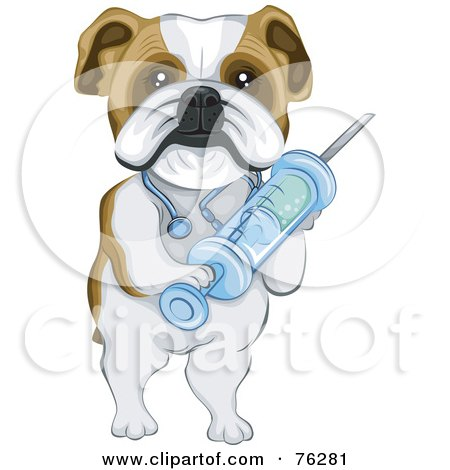 Royalty-Free (RF) Clipart Illustration of a Bulldog Vet Holding A Syringe by BNP Design Studio