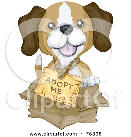 Adopt Puppies on Puppy Wearing An Adopt Me Sign And Sitting In A Box By Bnp Design