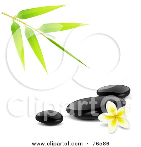 Royalty-Free (RF) Clipart Illustration of a Bamboo Stem Over Black Spa Stones And A Plumeria Flower by Oligo
