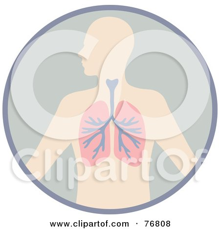 Royalty-Free (RF) Clipart Illustration of a Human Body With The Lungs In A Circle by Rosie Piter