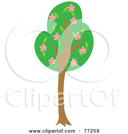 Royalty-Free (RF) Clipart Illustration of a Tall Green Tree With Pink Blossoming Flowers by Rosie Piter