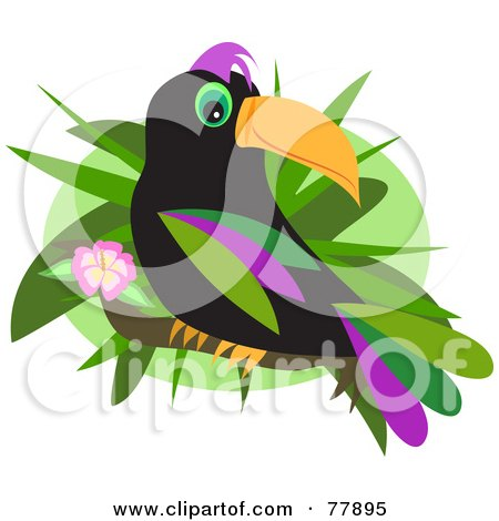 Royalty-Free (RF) Clipart Illustration of a Black Toucan Bird With Colorful Feathers, Perched On A Hibiscus Branch by bpearth
