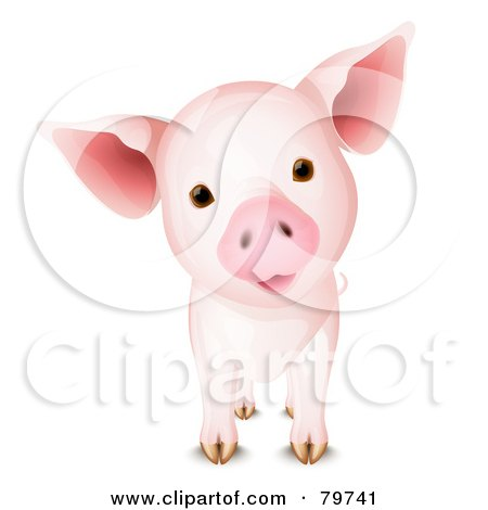 Royalty-Free (RF) Clipart Illustration of an Adorable Curious Pig With A Cocked Head by Oligo