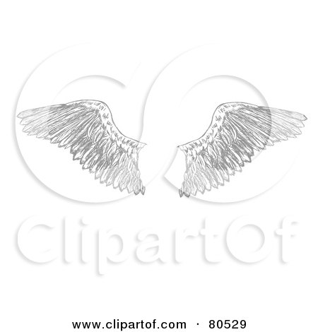 Royalty-free clipart picture of a pair of feathered eagle wings,