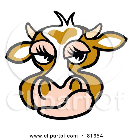 Dairy Cow Face