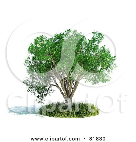 Royalty-Free (RF) Clipart Illustration of a 3d Realistic Tree In A Circle Of Grass by Mopic