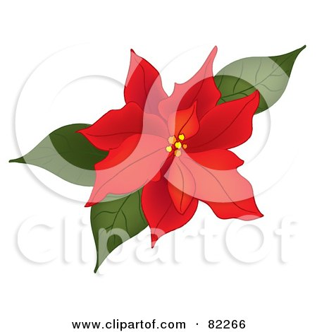Royalty-Free (RF) Clipart Illustration of a Red Poinsettia Bloom With Green Leaves by Pams Clipart