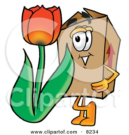 Cardboard Box Mascot Cartoon Character With a Red Tulip Flower in the Spring Posters, Art Prints