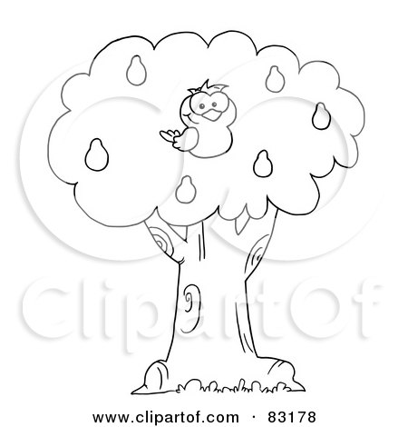 Royalty-Free (RF) Clipart Illustration of an Outlined Partridge in a Pear Tree by Hit Toon
