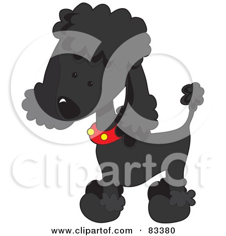 Royalty-Free (RF) Clipart Illustration of a Cute Black Poodle Puppy Dog Wearing A Red Collar With Yellow Spots And Sporting A Puppy Clip by Maria Bell