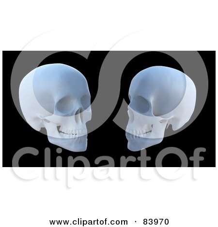 Royalty-Free (RF) Clipart Illustration of Two White 3d Human Skulls Over Black by Mopic