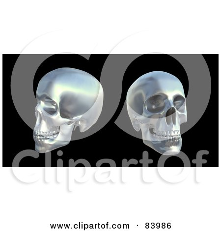 Royalty-Free (RF) Clipart Illustration of Two Silver 3d Human Skulls Over Black by Mopic