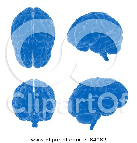 Royalty-Free (RF) Clipart Illustration of a Digital Collage Of Four Blue 3d Brains From Different Angles by Mopic