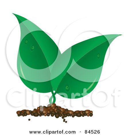 Royalty-Free (RF) Clipart Illustration of a Sprouting Green Leaf Plant With Dew by Pams Clipart