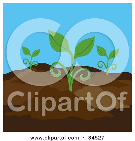 Royalty-Free (RF) Clipart Illustration of Seedling Plants Growing In A Garden by Pams Clipart