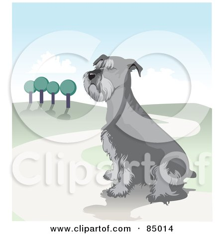 Royalty-Free (RF) Clipart Illustration of a Sitting Schnauzer Dog On A Hilly Landscape Path by David Rey