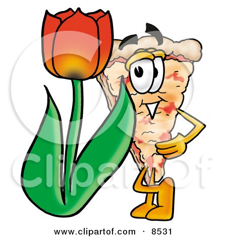 Slice of Pizza Mascot Cartoon Character With a Red Tulip Flower in the Spring Posters, Art Prints