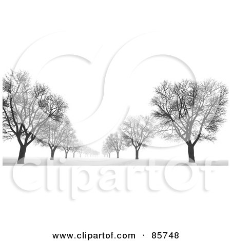 Avenue Of Bare 3d Trees In The Snow Posters, Art Prints
