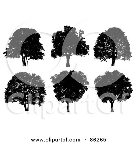 Royalty-Free (RF) Clipart Illustration of a Digital Collage Of Six Silhouetted Black Trees On White by Mopic