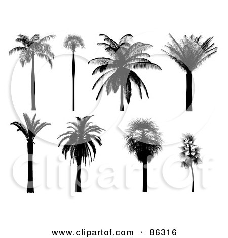 677361 moreover Save Cebus Trees 4 Road Safety Courtesy Solutions likewise Lukisan Terukur Rumah Melayu in addition Doorway With Light also Free Coloring Pages Kids. on tropical house design