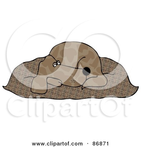 Tired Brown Pooch Resting On A Fluffy Dog Pillow Posters, Art Prints