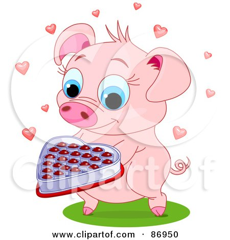 Royalty Free RF Clipart Illustration Of A Sweet Pig Holding Out A Box Of Valentine Chocolates