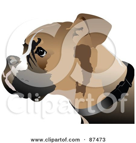 Royalty-Free (RF) Clipart Illustration of a Boxer Dog Sitting In ...