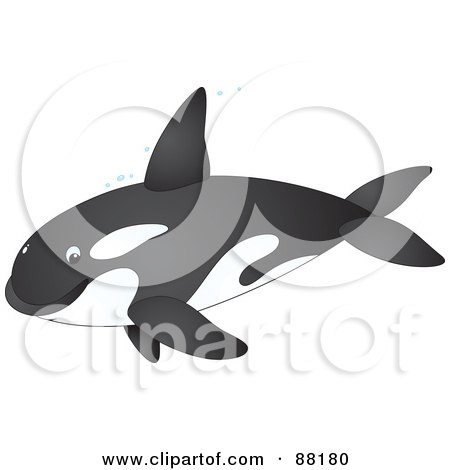Royalty-Free (RF) Clipart Illustration of a Cute Orca Whale In Profile With Bubbles by Alex Bannykh