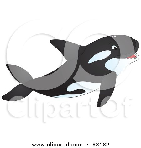 Royalty-Free (RF) Clipart Illustration of a Happy Orca Whale Swimming With His Mouth Open by Alex Bannykh
