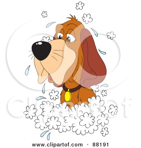 Clipart Of A Cartoon Happy Puppy Dog And Cat Soaking In A