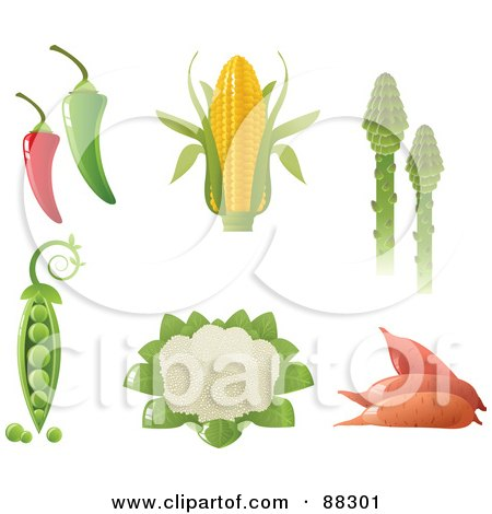 Royalty-Free (RF) Clipart Illustration of a Digital Collage Of Green And Red Hot Peppers, Corn, Asparagus, Peas, Cauliflower And Yams by Tonis Pan