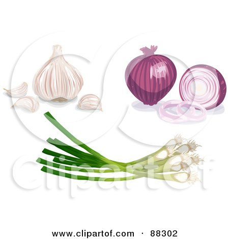 Royalty-Free (RF) Clipart Illustration of a Digital Collage Of A Purple Onion, Garlic And Scallions by Tonis Pan