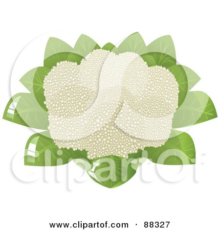 Royalty-Free (RF) Clipart Illustration of a Full Head of Cauliflower by Tonis Pan