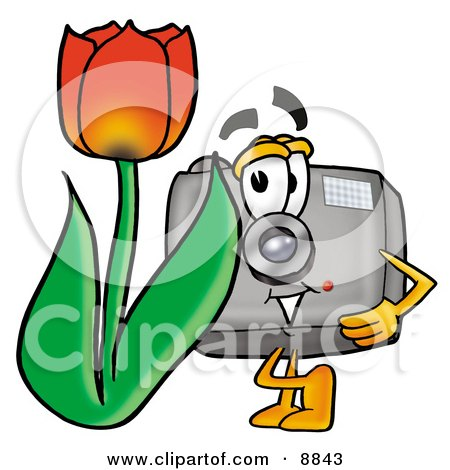Camera Mascot Cartoon Character With a Red Tulip Flower in the Spring Posters, Art Prints