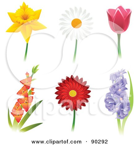 Royalty-Free (RF) Clipart Illustration of a Digital Collage Of Beautiful Daffodil, Daisy, Tulip, Gladiola, Gerbera Daisy And Hyacinth Flowers by Tonis Pan