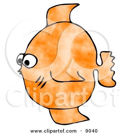 Small Orange Saltwater Fish Clipart Illustration by djart