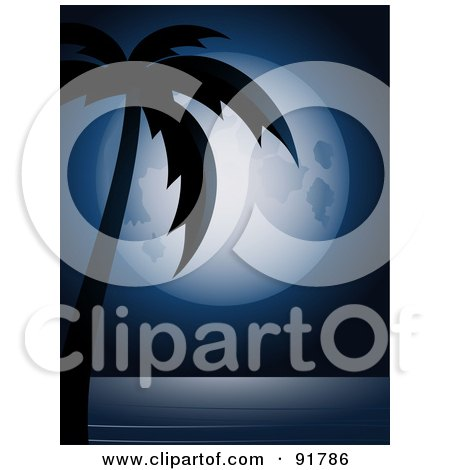 ...over silhouetted palm tree the sea and cocktails poster art print. jpg.