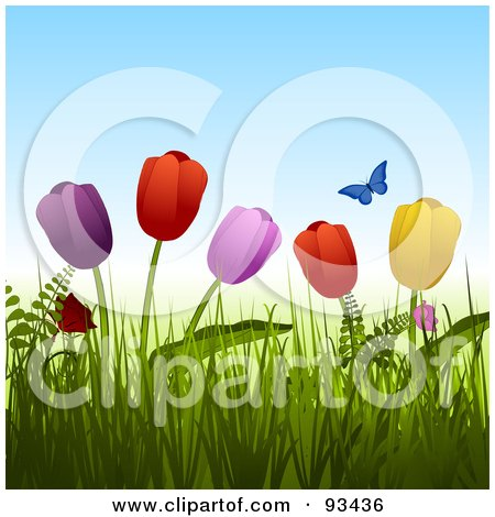 Royalty-Free (RF) Clipart Illustration of a Blue Butterfly Over Colorful Tulips In Grass by elaineitalia