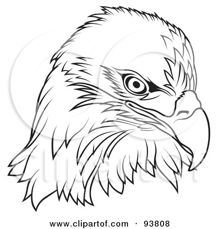 Royalty-Free (RF) Clipart Illustration of a Black And White Bald Eagle Head by dero
